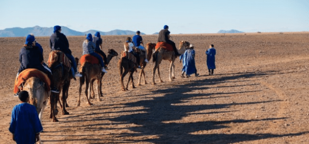 Exclusive team riding camels