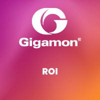 Gigamon ROI