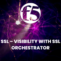 SSL – VISIBILITY WITH SSL ORCHESTRATOR_200x200